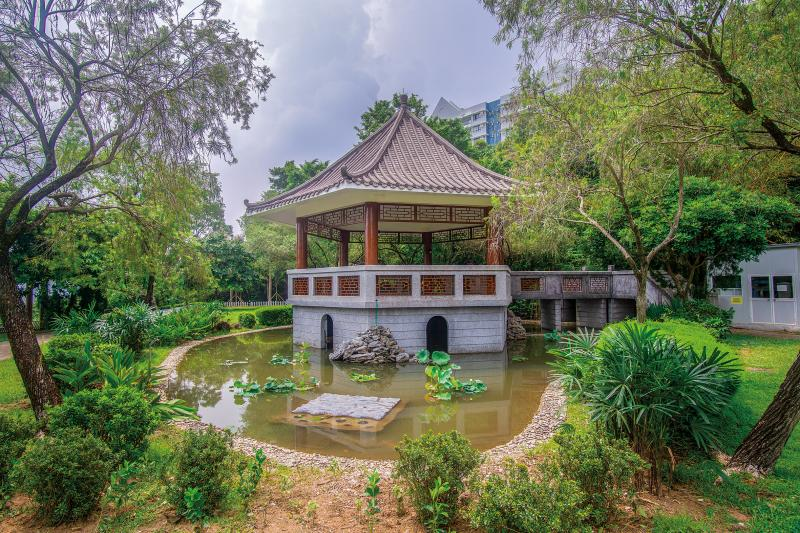 Beautifying the Chinese Garden Pond near staff quarters tower 15-19 could be a symbol of our university