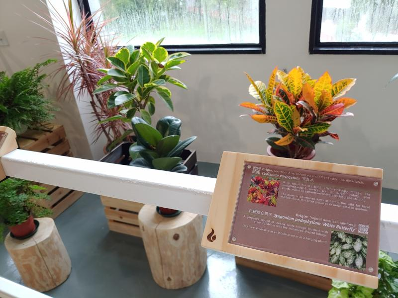 The new Green Corner will provide information on the selected plants with information tags displaying the plant origins, unique features and fun facts.